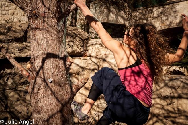 Leila tree CUIMG_3791