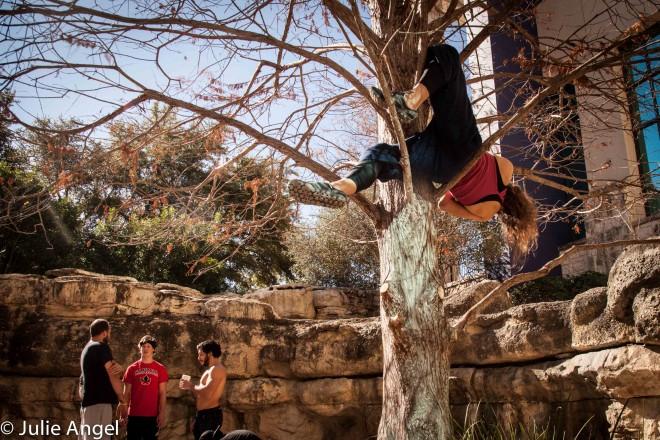 Leila tree hang guys talkIMG_3788
